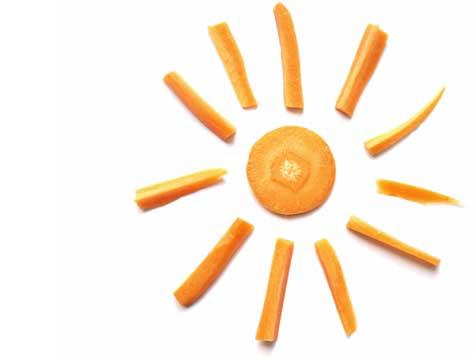 sole-carote-sl