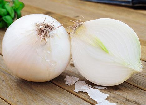 cipolla-bianca